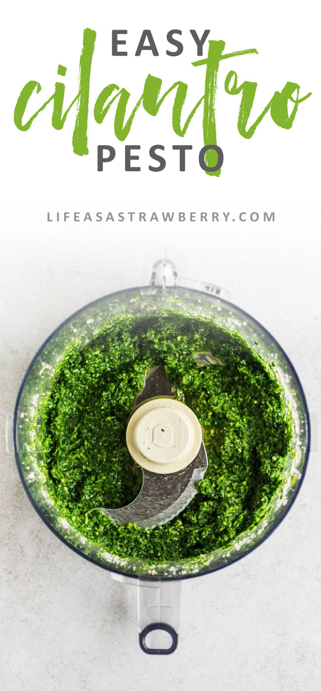 Homemade Cilantro Pesto Recipe - This easy cilantro pesto is perfect for summer and a great way to use any extra cilantro/coriander you have! Nut-free.