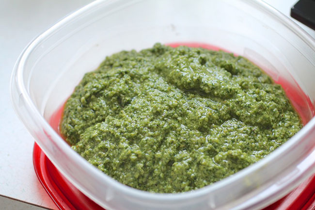 Cilantro Pesto and Cilantro Yogurt Sauce - these two versions of cilantro sauce are easy to make and are perfect for topping tacos, fish, chicken, and more! Vegetarian.