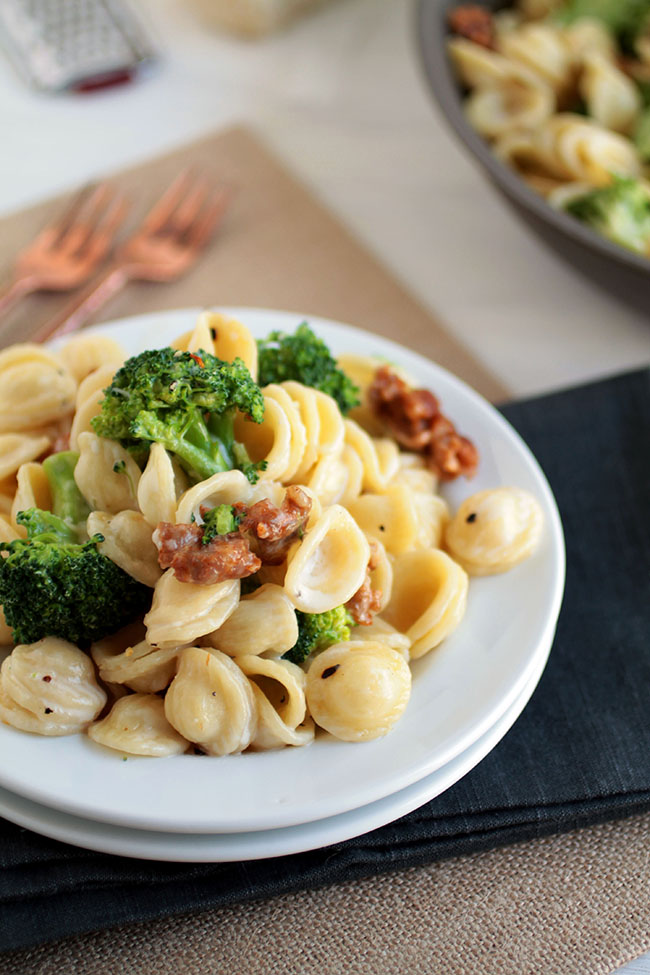 Pasta orecchiette with spicy sausage, broccoli, and an easy cream sauce