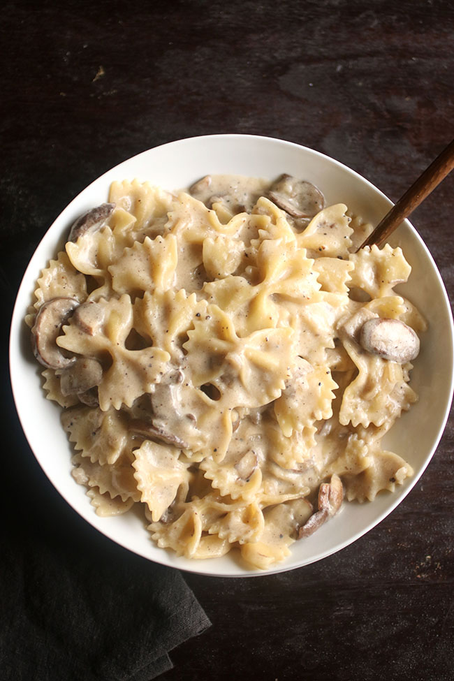 Overhead photo of bowtie pasta in a shallow white bowl with creamy mushroom sauce on a dark brown background