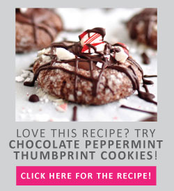 Chocolate Cookies topped with peppermint