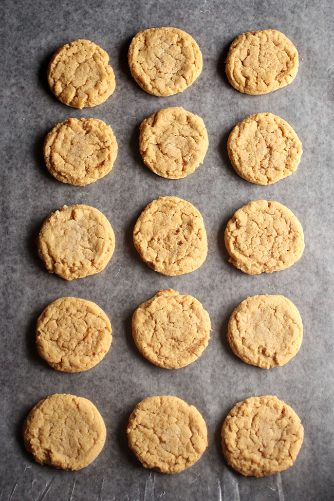 Overhead photo of a pan of homemade peanut butter cookies
