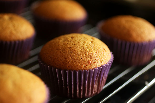 Cupcakes 104: How to store and freeze cupcakes   Everything you need to know about storing cupcakes and freezing cupcakes!