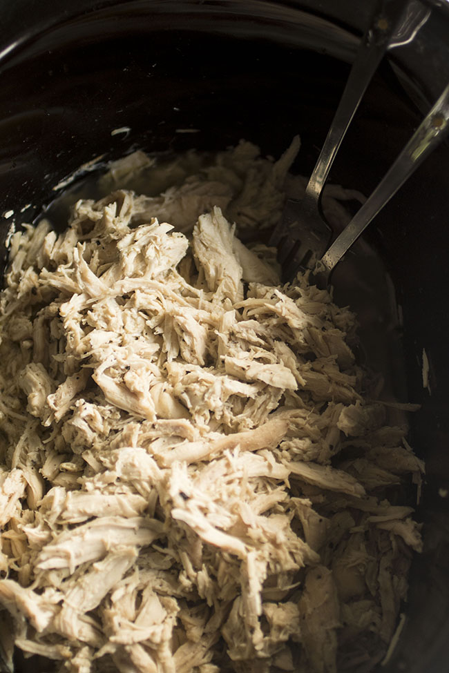 close up photo of shredded chicken in a black bowl with two forks