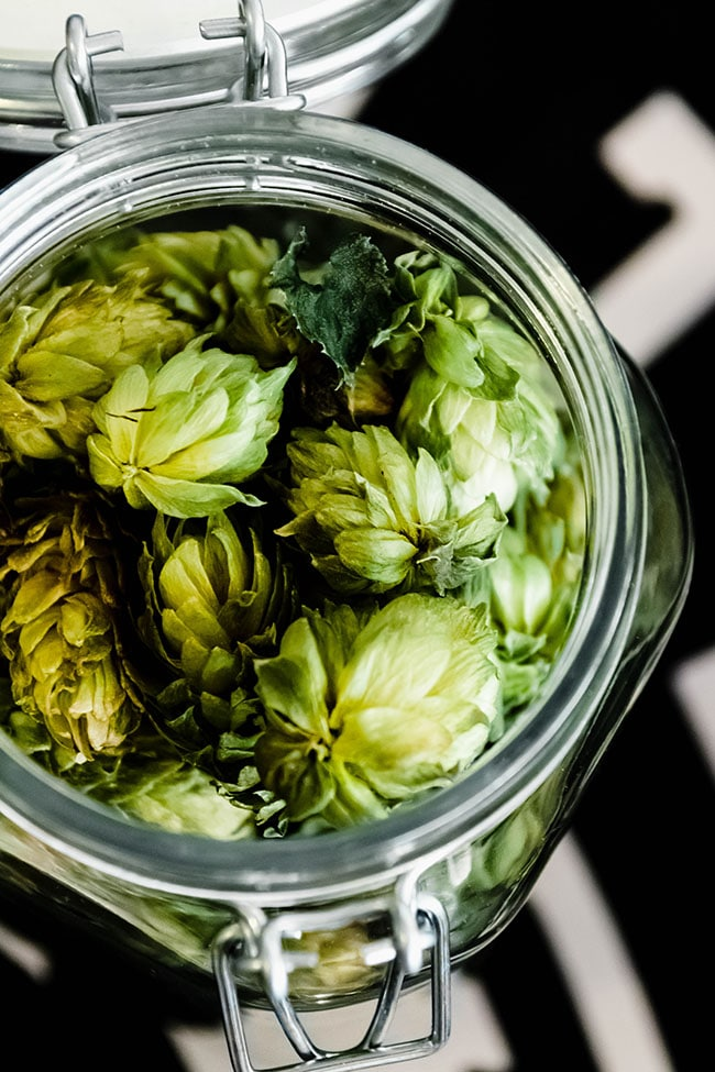 overhead photo of fresh hops in a glass jar