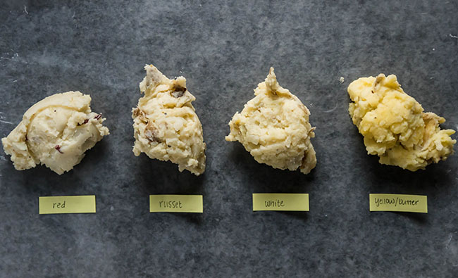 overhead photo of four scoops of mashed potatoes in a line on a dark grey background