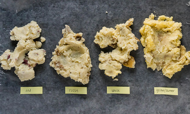 overhead photo of four types of mashed potatoes scooped onto a dark grey surface, each with a label specifying potato type