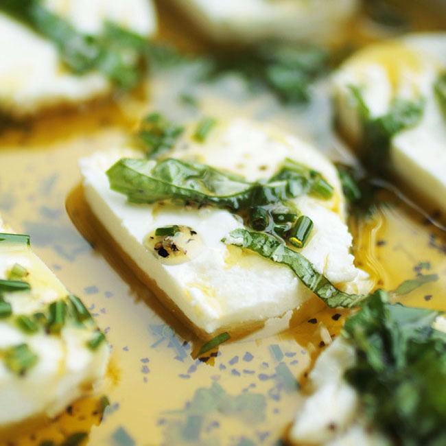 slices of goat cheese in a shallow dish with olive oil and fresh herbs